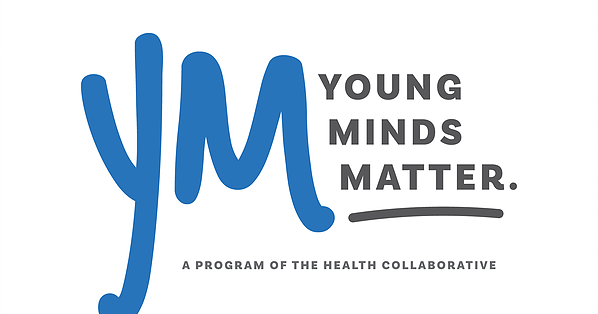 Youth Mental Health Council